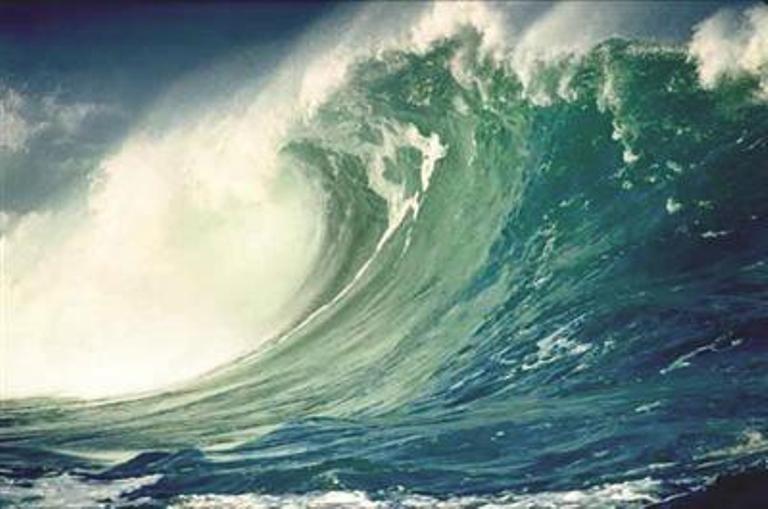 tsunami mock drill
