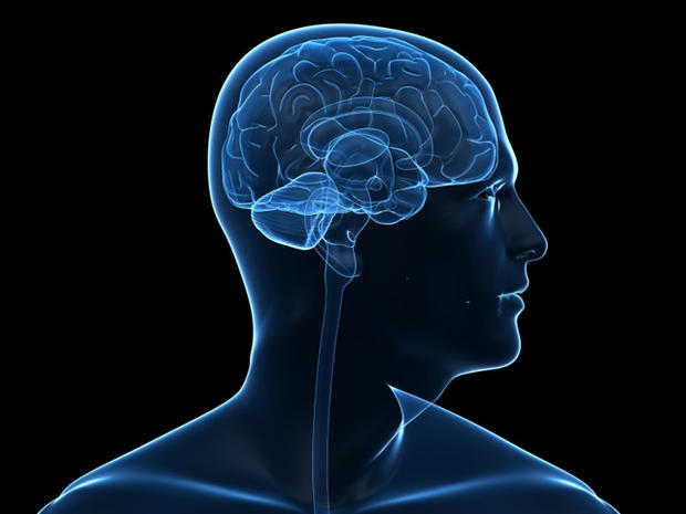 Know how human brains slack with age