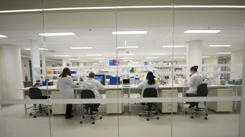 Australian scientists develop method to quickly diagnose skin cancer