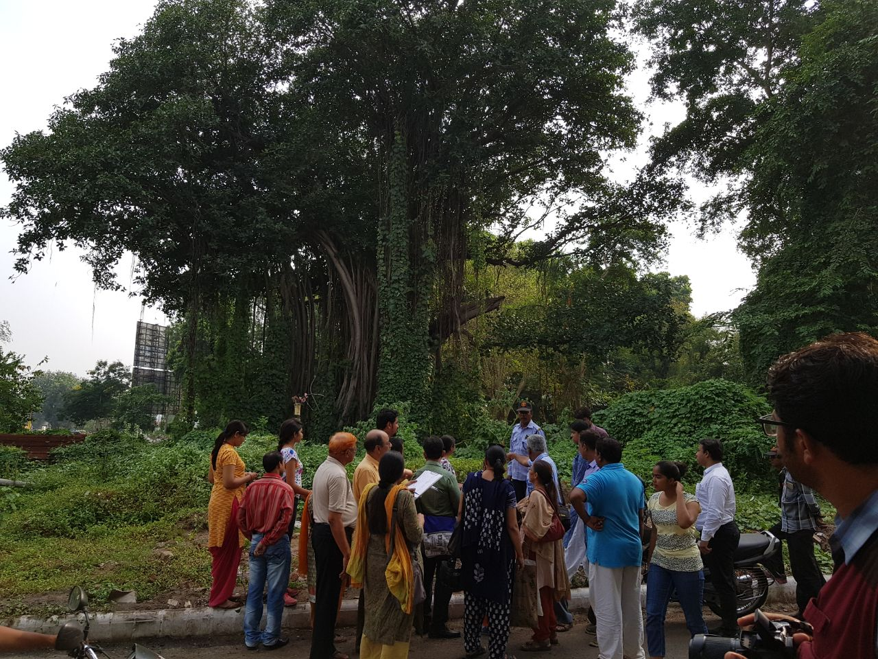 Nature Walk Group oppose the move to cut down oldest Banyan trees
