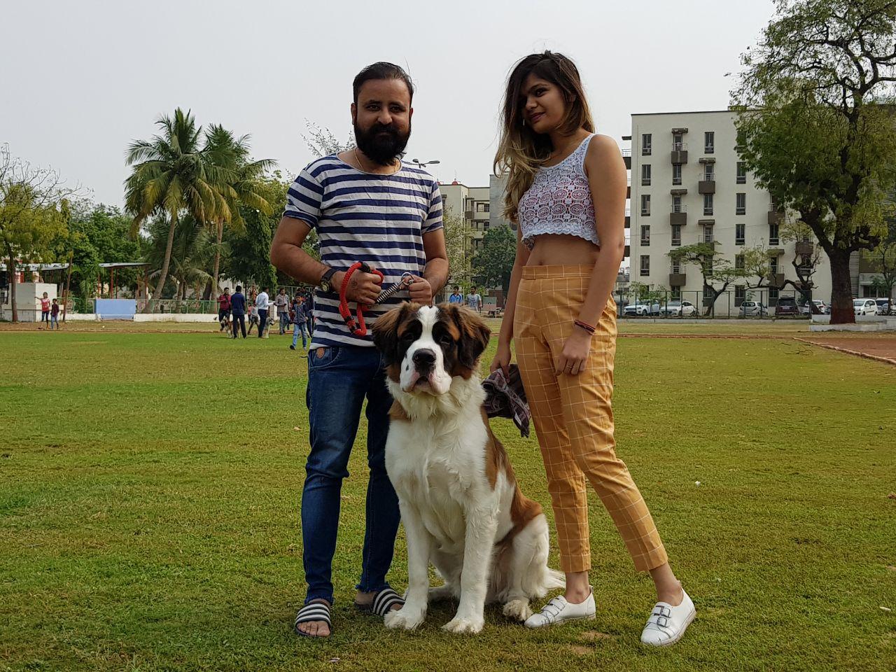 Dog show attract 150 plus breeds in Vadodara