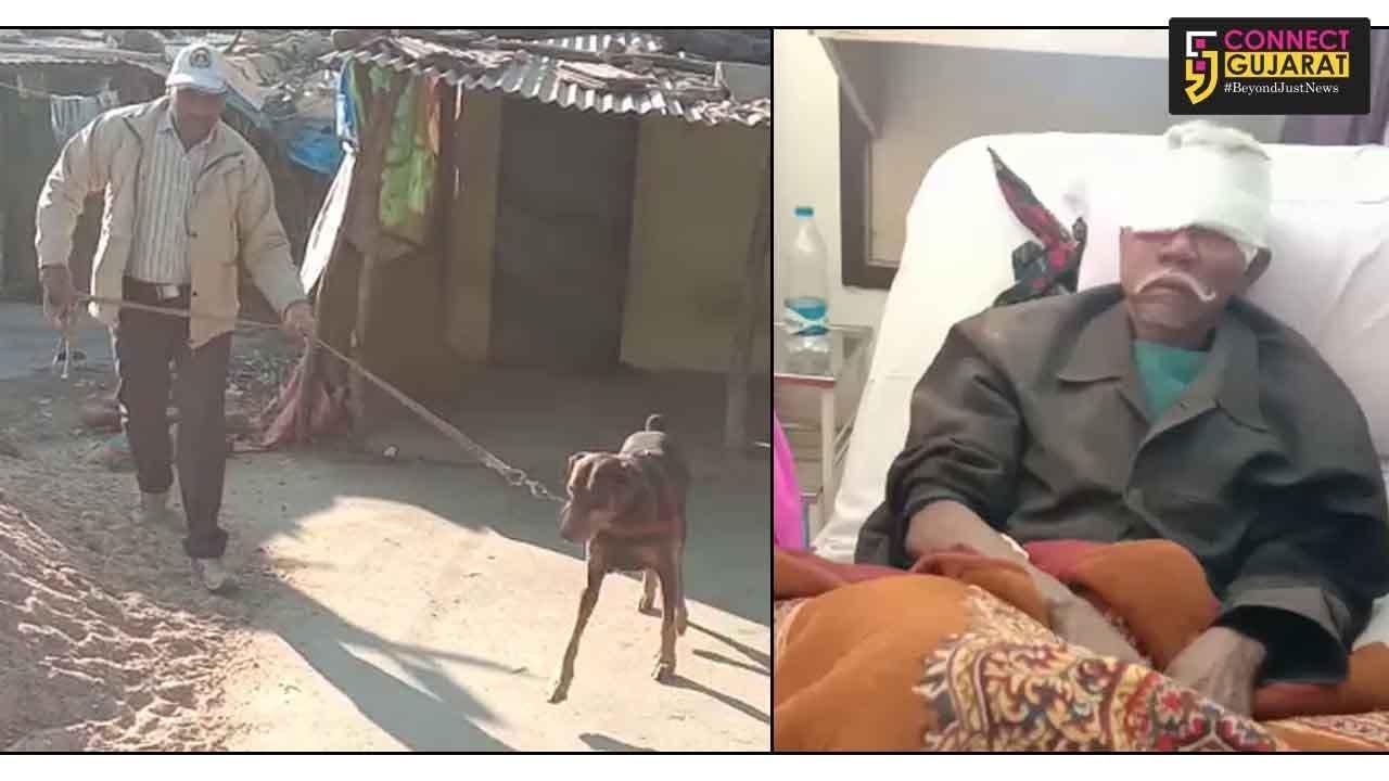 Armed robbers striked inside two houses in Ishwarpura village in Waghodia