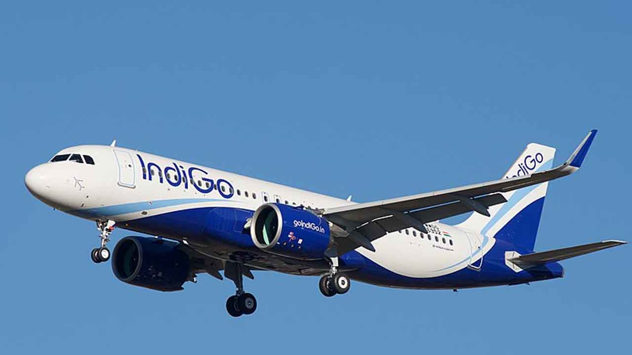 Indigo takes off with viral meme on Twitter