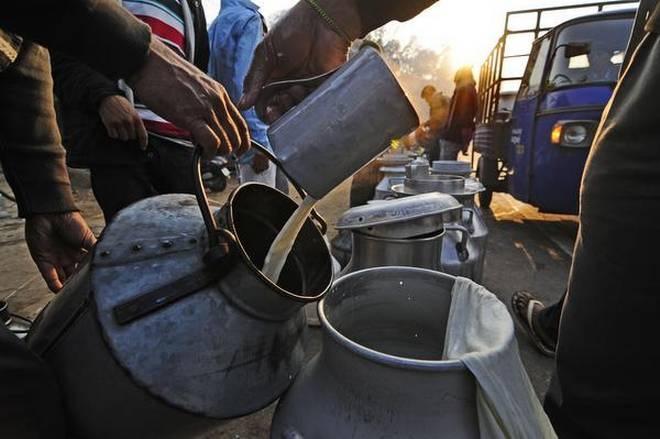 Milk quality largely safe, presence of Aflatoxin M1 residues raises concern: FSSAI survey