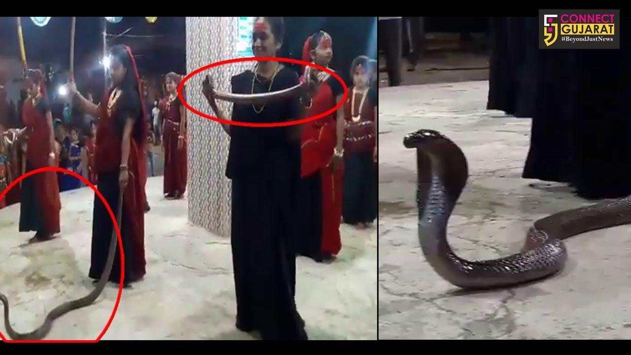 Junagadh: Mesmerizing people with the snake act during Garba gone wrong