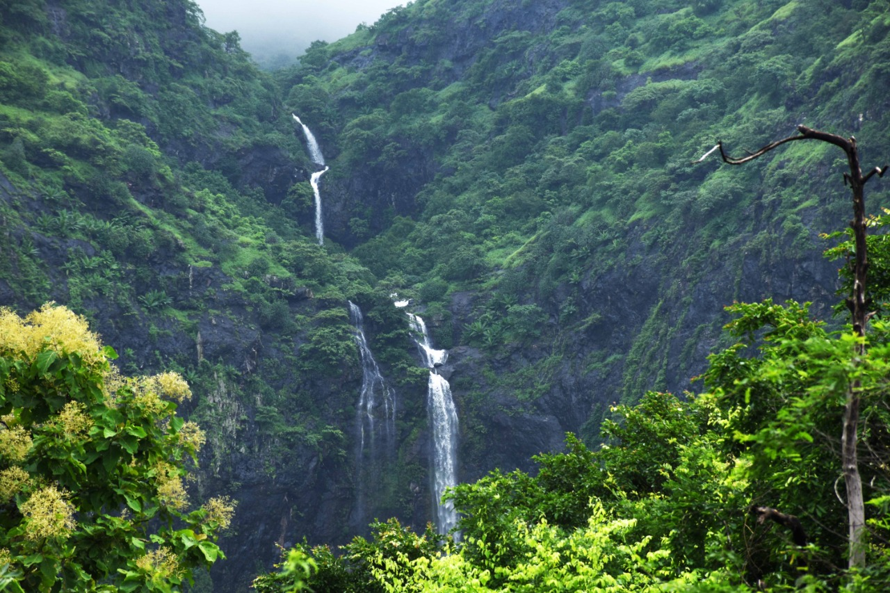 Monsoon, the time to enjoy nature in its full splendour