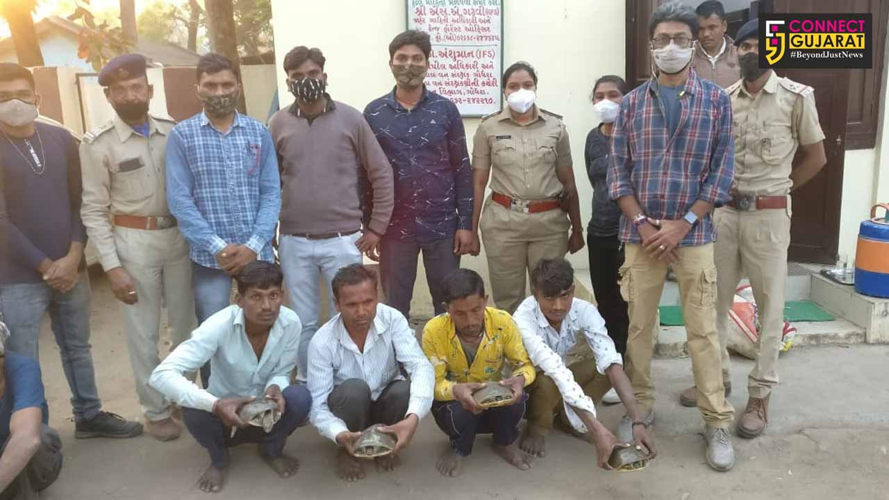 Five persons caught performing tantric rituals on wildlife turtles