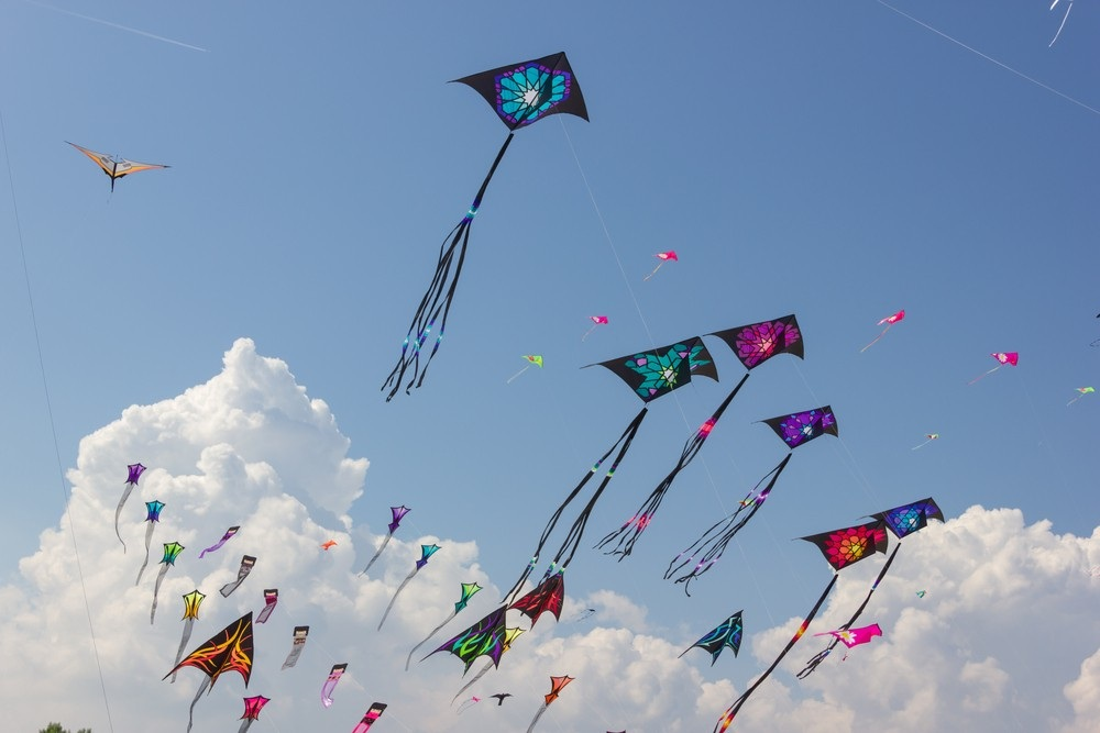One youth died after came in contact with deadly kite string in Vadodara