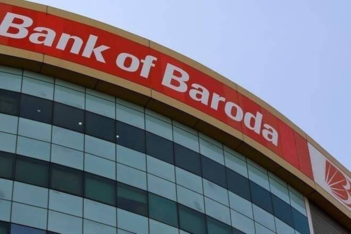 Money put inside bank locker eaten by termites in Vadodara