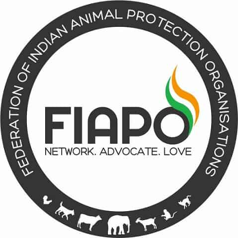 FIAPO's latest investigation unveiled shocking details of land of the White Revolution