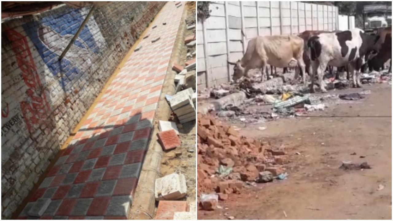 Vadodara's ward 1 need good interior roads and water supply
