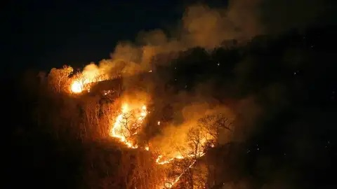 Odisha: Simlipal forest fire raging for 10 days